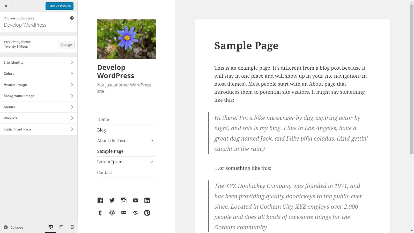 Theme Options – The Customize API   Theme Developer Handbook   WordPress  Developer Resources