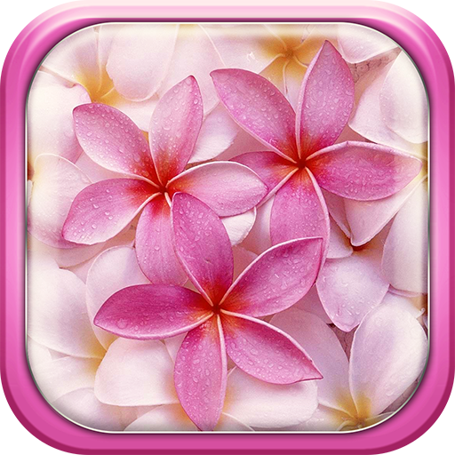 Pink Flowers Live Wallpaper 個人化 App LOGO-硬是要APP