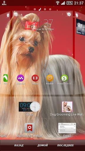 Dog Grooming Live Wallpaper