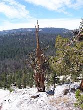 Photo: Yosemite