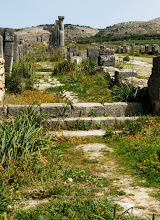 Photo: Volubilis - Sidewalk of the Decumanus .......... Stoep langs de Decumanus