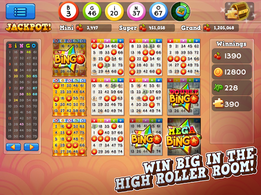 Bingo Pop 4.5.55 screenshots 12