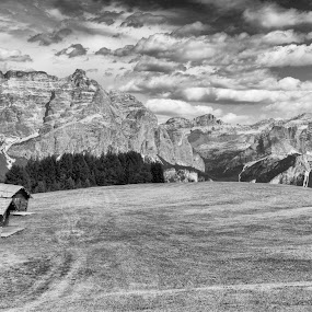 Dolomites and Meadow by Sam Alexander - Black & White Landscapes ( 2017, august, italy )