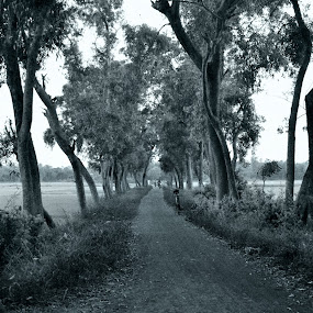 by Kunal Karmakar - Nature Up Close Trees & Bushes