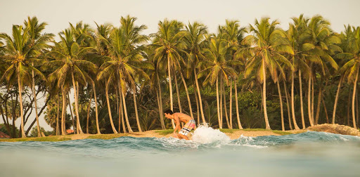DR-Man-Surfing-on-Wave-with-Palm-Trees-in-Background.jpg - A surfer takes advantage of the waves in the Dominican Republic.