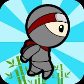 Zigzag Ninja