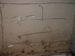 Photo: mold build up around tub