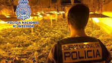 La Policía Nacional ha intervenido en dos viviendas de La Chanca.