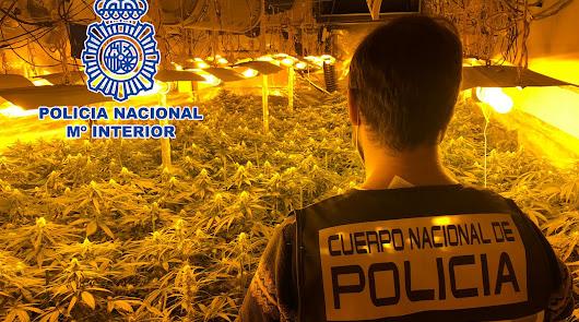 Golpe a la marihuana en La Chanca: la Policía detiene a cinco familiares