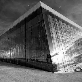 Oslo Opera House by Teddy Tavares - Buildings & Architecture Public & Historical ( pwc, black and white )
