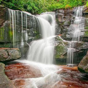 Cedar Rock Creek Falls by Charles Hardin - Nature Up Close Water
