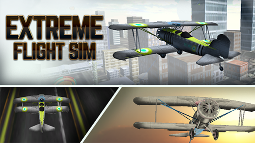 Extreme Flight Sim