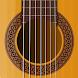 リアルギター - バーチャルギタープロ
