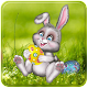 easter dp APK