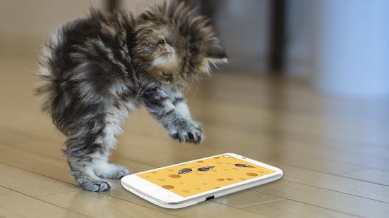 Hry pro kočky Myš - náhled