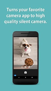 Mute Camera Pro 3