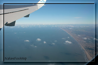 Photo: NF Photo 110127 vid avfärd från Amsterdam - taking off from Amsterdam into the blue http://nfbild2.blogspot.com/2011/02/blue-monday-i-luften-in-air.html