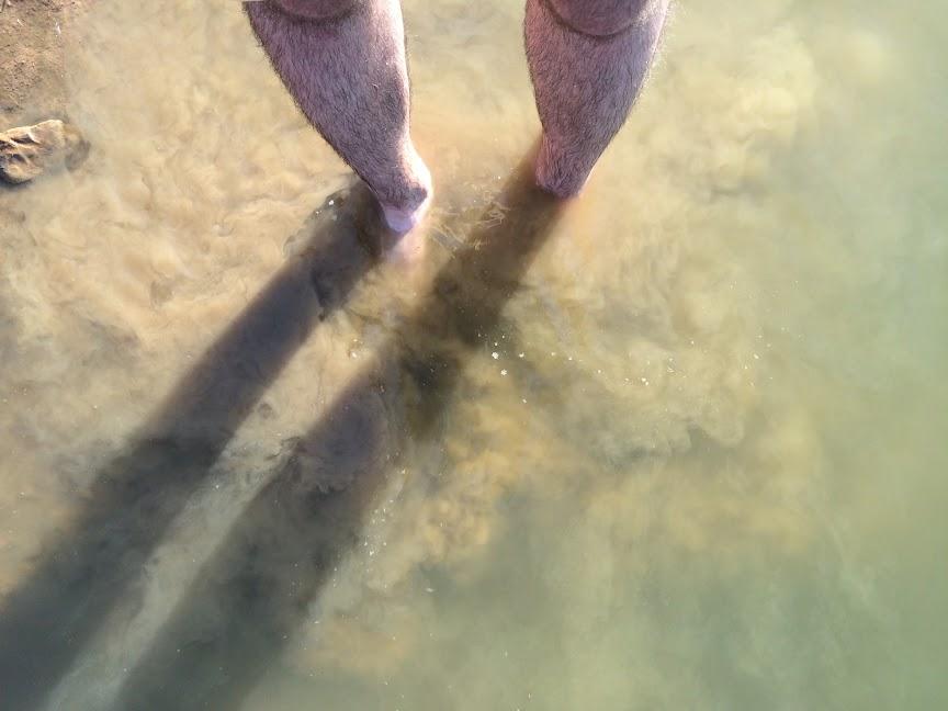 Původně jsme se chtěli v Křenovském rybníce vykoupat. Ale rozmysleli jsme si to.