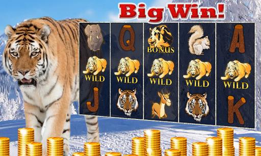 Iceberg Tiger King Free Slots