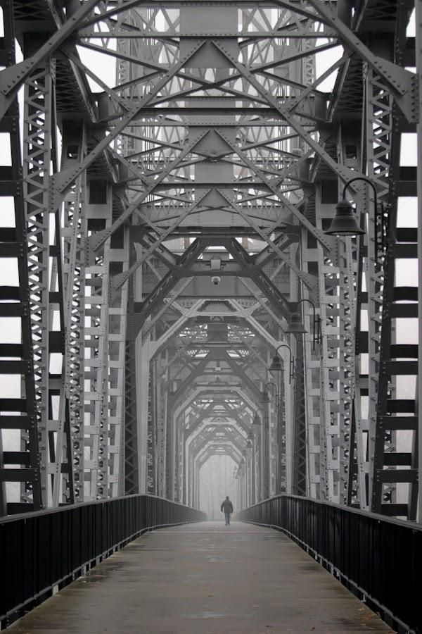 Into the Mist by Craig Pifer - Buildings & Architecture Bridges & Suspended Structures ( oregon, walking, pedestrian, fog, bridge, walk, city )