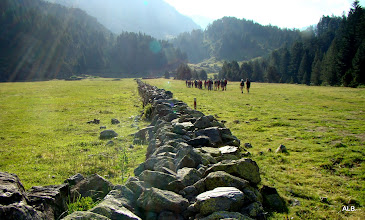 Photo: El fondo del muro.