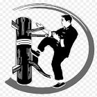 Wing Chun Technique icon