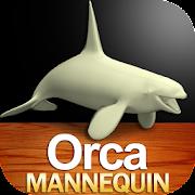 Orca Mannequin