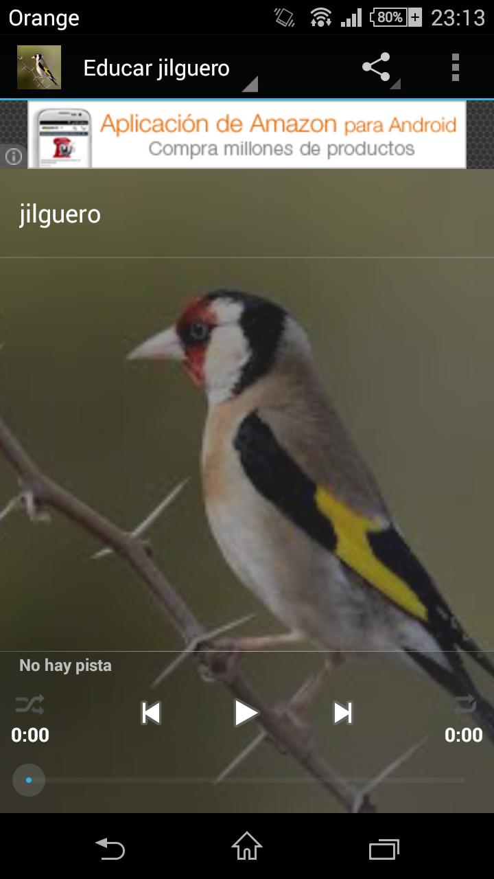 Скриншот Educar jilguero
