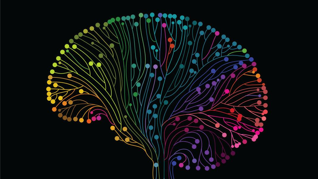 multicoloured-brain.jpg