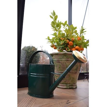 Vattenkanna GardenMind oval m stril 4 liter olika färger