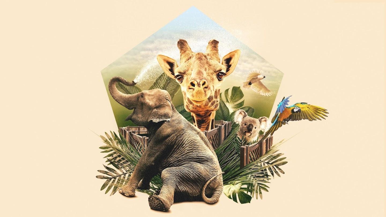 Watch Mega Zoo live