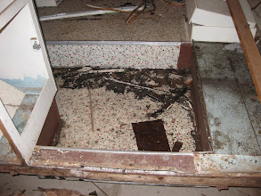 Photo: The floor was in decent condition, mouse feces aside.