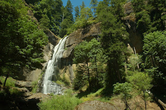 Photo: Golden Falls on Millicoma River