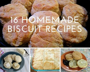 16 Homemade Biscuit Recipes