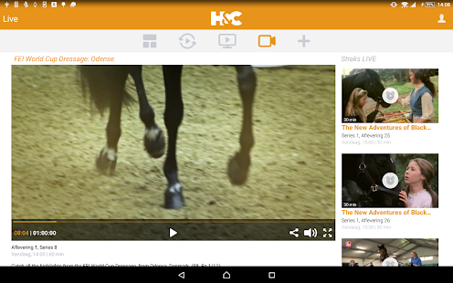 Horse & Country Play NL- screenshot thumbnail