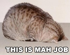 lolcat_this_is_mah_job[1]