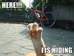 here-i-is-hiding[1]
