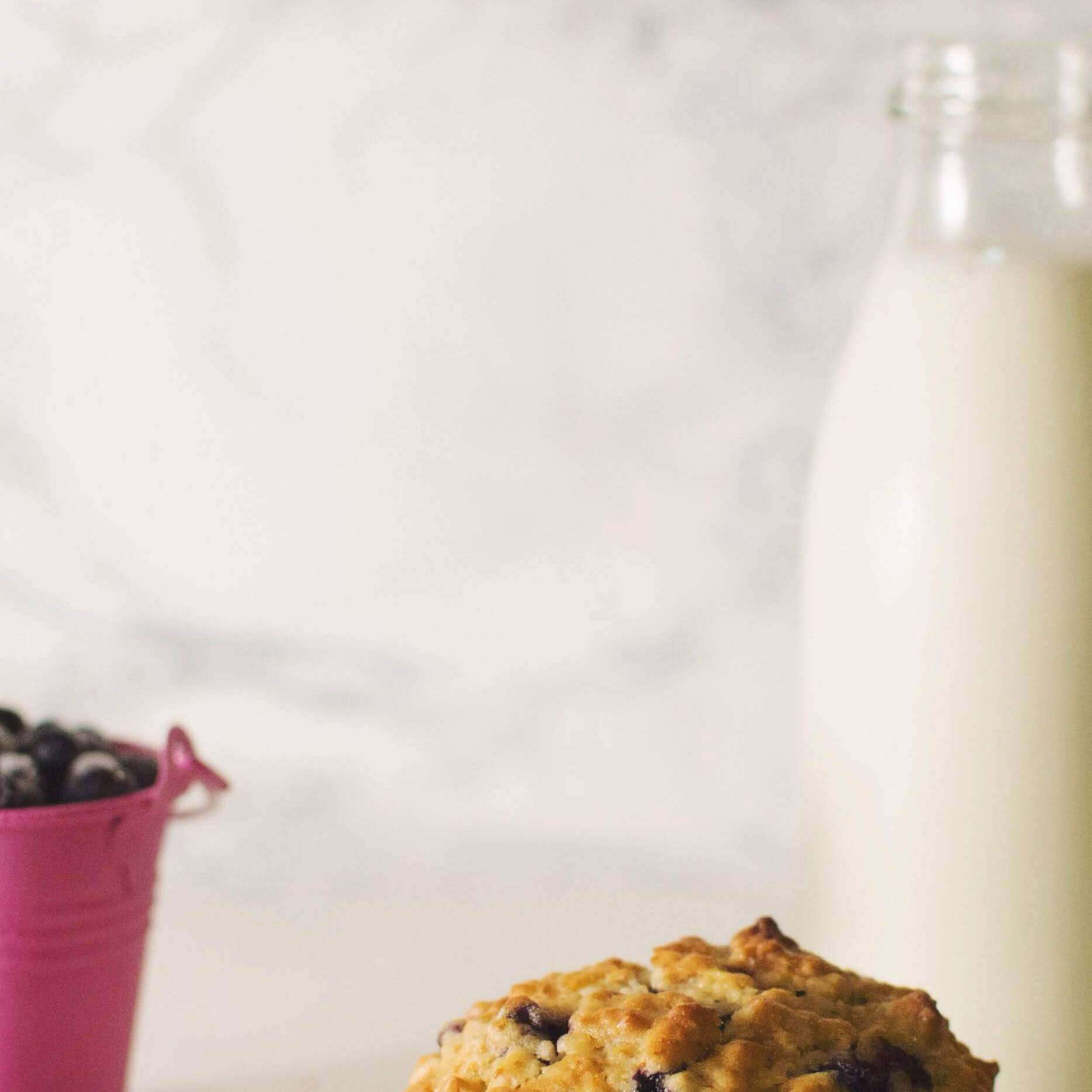 Best Oatmeal Blueberry Muffins You Have Tried