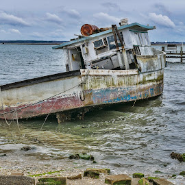 Beached in the Bay by Gwen Paton - Transportation Boats ( old boat, chincoteague bay, va, water )