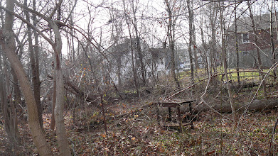 Photo: Rear 11 Packard Ln (for pano #5)