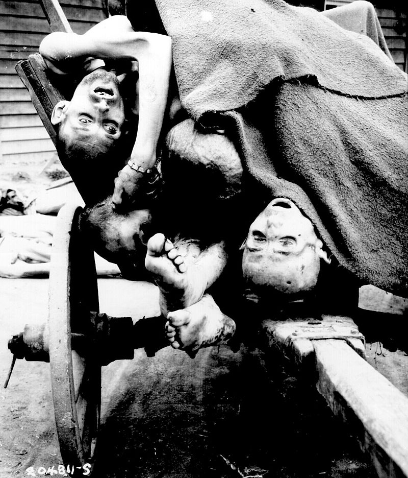 Cart full of the emaciated corpses of Holocaust victims.