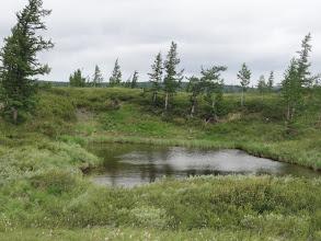 Photo: Маленькое озерцо около оз.Сортлор. Волок идет мимо него.