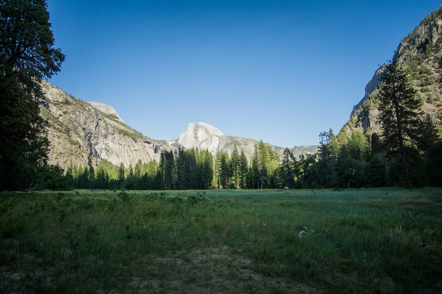 Cook's Meadow with view of Half Dome