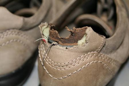 Schoenmakerij Mario foto