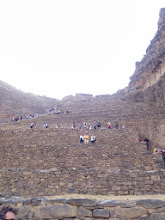 Photo: Looking up the terraces