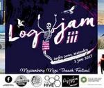 Logjam III, Single Mingle, & Muizenberg mini-beach Festival : Surfers Corner