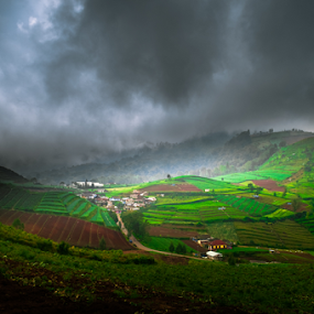 Green land by Martin Marthadinata - Landscapes Mountains & Hills ( landscapes, nature, hills )