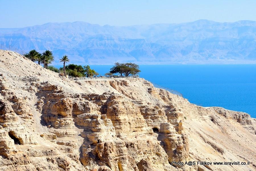 Экскурсия в Эйн Геди и на Мертвое море.