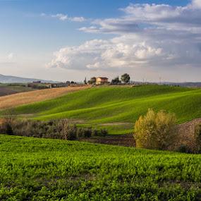 Onde by Raffaello Terreni - Landscapes Prairies, Meadows & Fields ( farm, hills, green field, blu, sky, trees, numbs )