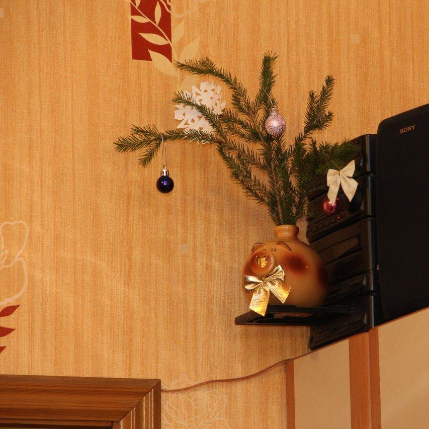 """Photo: (https://melda.ru/2013/01/новогодняя-свинья-2/)  Новогодняя Свинья  В этом году - с ещё более пушистой ёлкой! Фото - +Dmitry Nesterov(плюс несколько фотографий ёлки:http://www.keyd.ru/2012/12/30/с-наступающим-новым-годом/)  Прошлогодняя свинья:https://plus.google.com/118114018285093982179/posts/NrBSAbWHtH2  А всё потому, что """"подставка для кофе"""" у этого муз. центра не закрывается в принципе."""